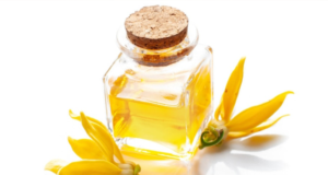 How-can-you-use-Essential-Oils-for-Stress-Relief