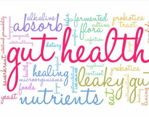 Why gut health is important