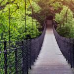 How-to-travel-Eco-friendly-hindi