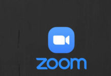 What did zoom do to capture the market?