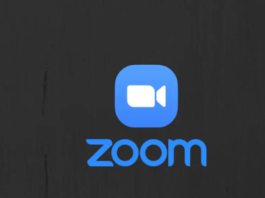 What-did-zoom-do-to-capture-the-market-hindi-1